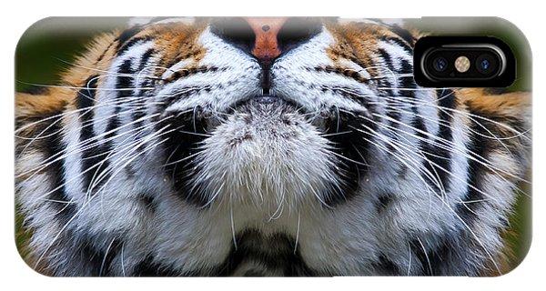 Tiger 1  IPhone Case