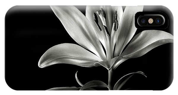 Tiger Lily In Black And White IPhone Case
