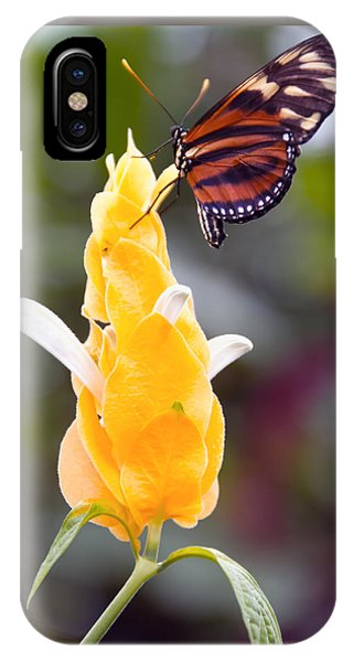 Tiger Longwing IPhone Case