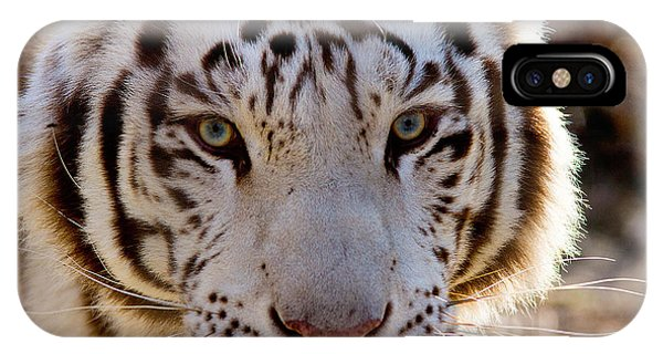 Tiger Stripes Exotic Animal Sanctuary 8 IPhone Case