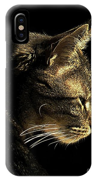 Tiger Within IPhone Case