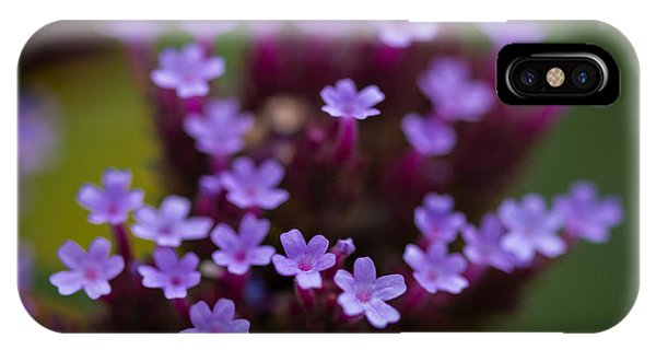 tiny blossoms II IPhone Case