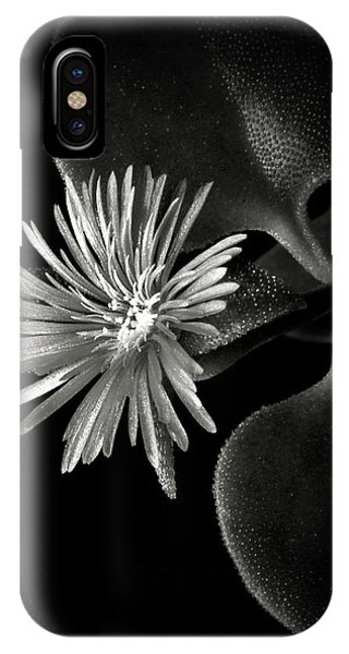 Tiny Ice Plant In Black And White IPhone Case