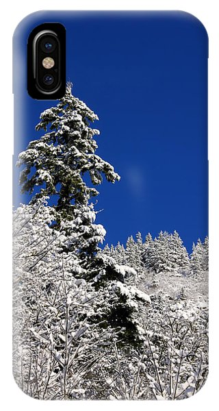 Towering Tree On Snow Covered Mountain IPhone Case