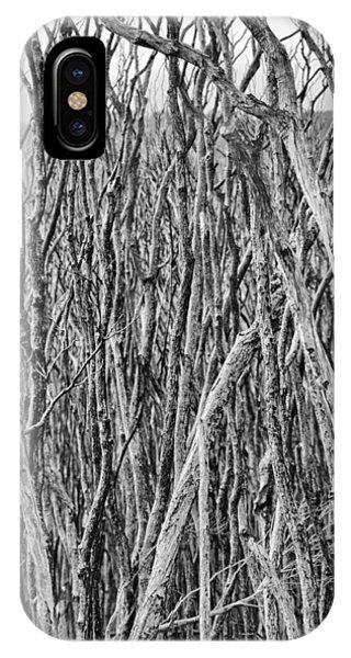 Wilsons Promontory iPhone Case - Tree Cemetery V2 by Douglas Barnard
