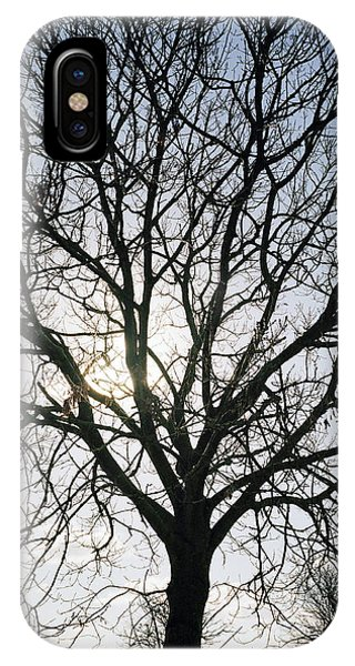Tree In Silhouette Phone Case by Michael Marten