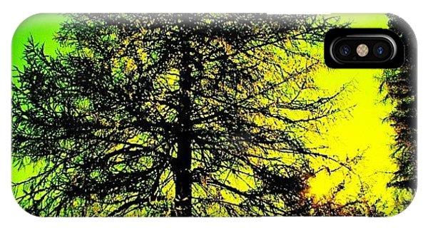 Beautiful Landscape iPhone Case - Tree by Luisa Azzolini