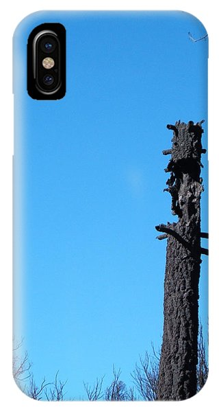 Death Valley iPhone Case - Tree Trunk Burned by Naxart Studio