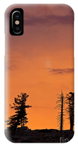 Trees At Sunset IPhone Case