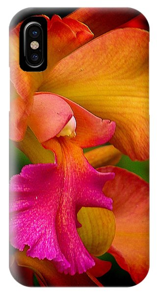 Tropical Splendor IPhone Case
