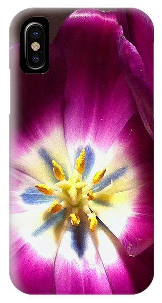 Tulip Overture IPhone Case