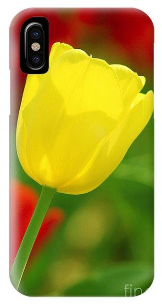 Tulipan Amarillo IPhone Case