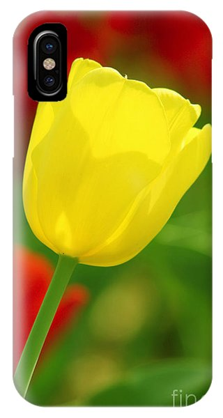 Tulipan Amarillo IPhone Case