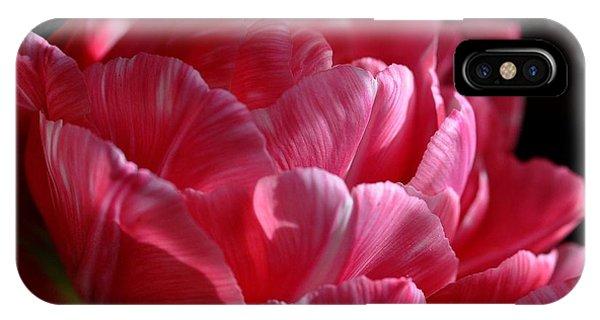 Tulipe IPhone Case