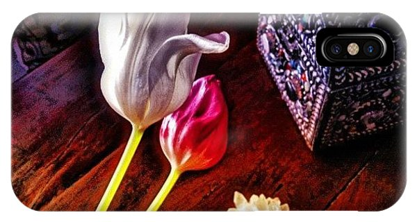 Florals iPhone Case - Tulips With Jeweled Chest by Paul Cutright