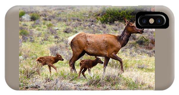 Twin Elk Calves IPhone Case