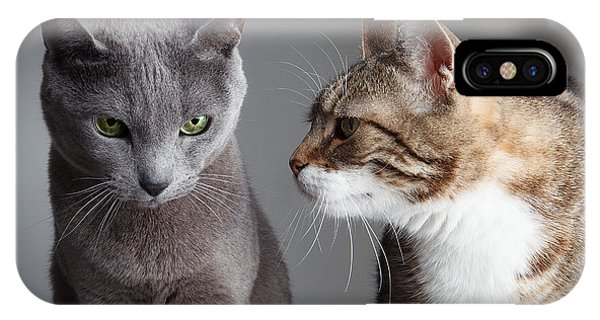 Purebred iPhone Case - Two Cats by Nailia Schwarz