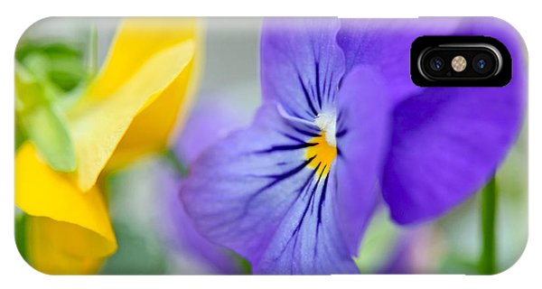 Two Pansies Ln Love IPhone Case