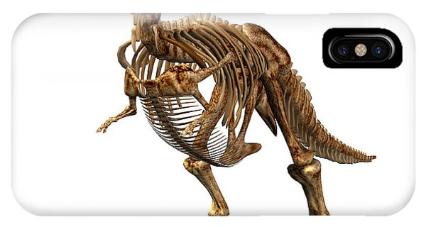 Tyrannosaurus Rex Dinosaur Phone Case by Friedrich Saurer
