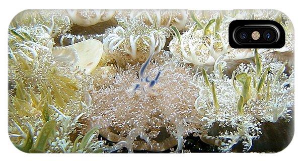 Underwater Beckoning IPhone Case