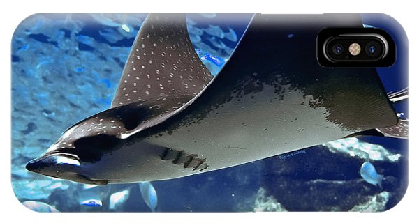 Underwater Flight IPhone Case