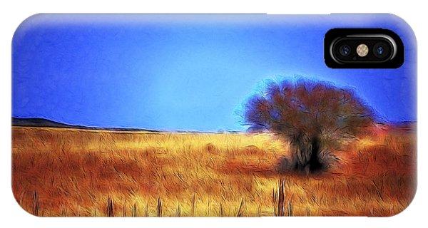Valley San Carlos Arizona IPhone Case