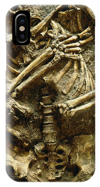 View Of The Skeleton Of A Neanderthal Phone Case by Volker Stegernordstar - 4 Million Years Of Man