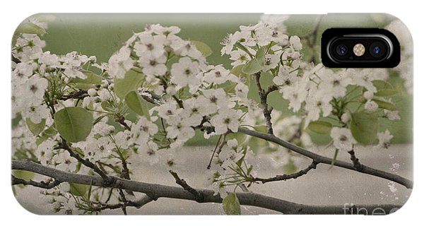Vintage Spring IPhone Case