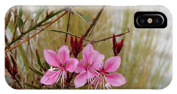 Visiting The Pink Guara IPhone Case