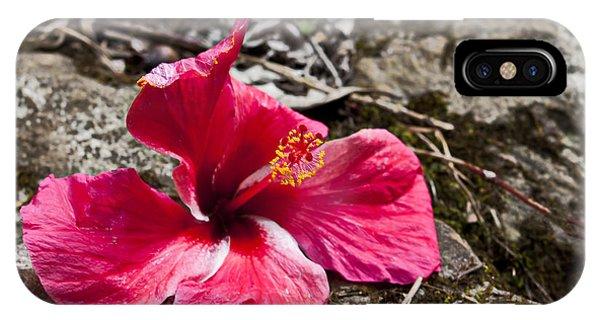 Waihe'e Hibiscus IPhone Case