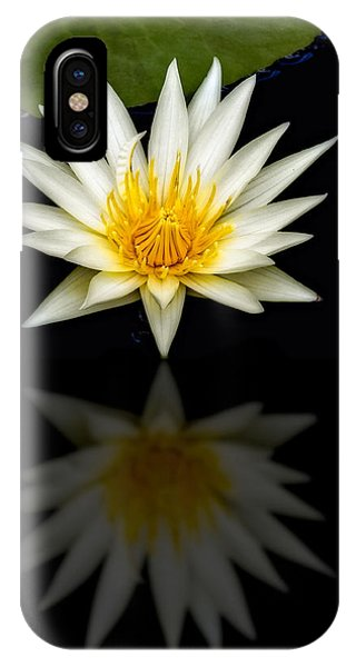 Lillie iPhone Case - Waterlily And Reflection by Susan Candelario
