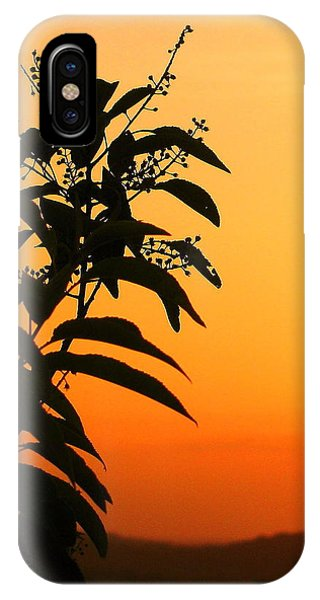 Whipple Hill IPhone Case