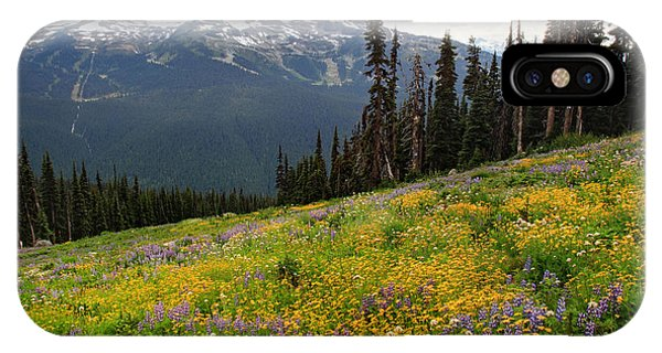Whistler Blackcomb Wild Flowers In Bloom Phone Case by Pierre Leclerc Photography