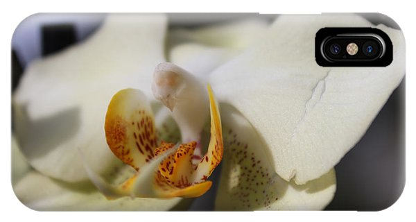 White Dove Orchid IPhone Case