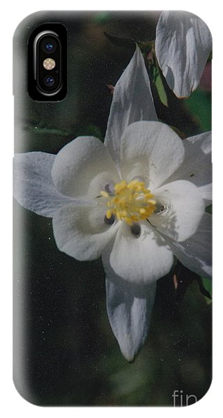 White Flower Splendor IPhone Case