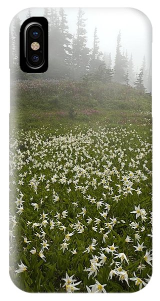 White Glacier Lily (erythronium Montanum) Phone Case by Bob Gibbons