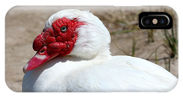 White Muscovy Duck With Red Bill Phone Case by Tracie Kaska