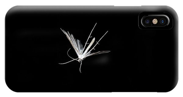 Pterygota iPhone Case - White Plume Moth In Flight by Ted Kinsman