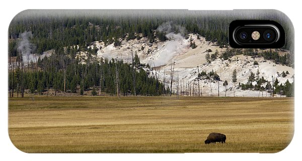 Yellowstone National Park iPhone Case - Wild Buffalo Yellowstone National Park by Dustin K Ryan