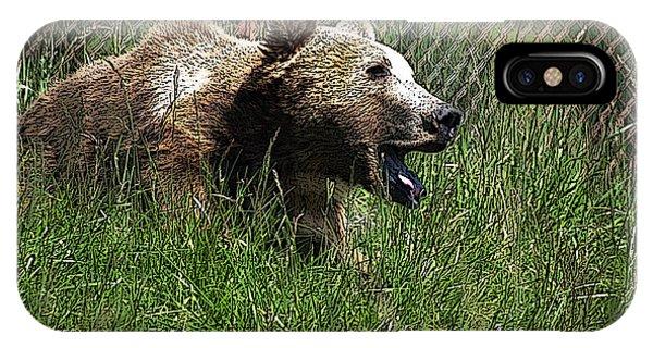 Wild Life Safari Bear IPhone Case