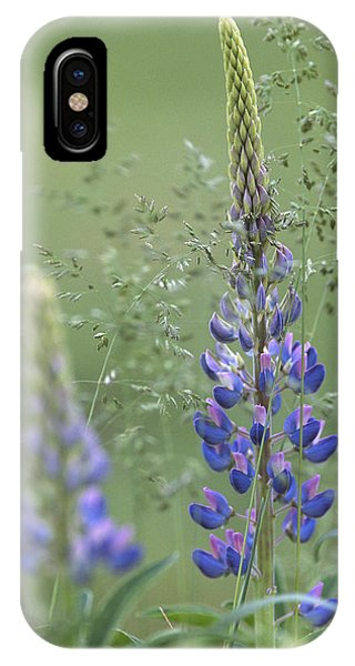 Wild Lupine Flower IPhone Case
