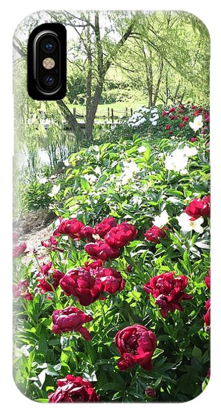 Willow Lake Peonies  IPhone Case