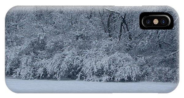 Winter Delight Phone Case by Cedric Hampton