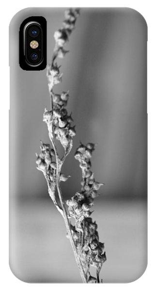 Winter Stem II IPhone Case