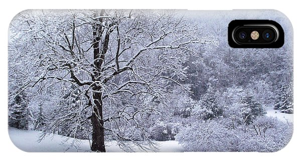 Winter Tree And Fence In The Valley IPhone Case