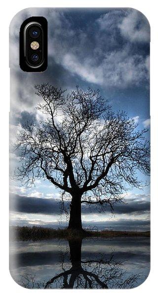 Wintering Oak Tree IPhone Case