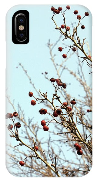 Winter's End IPhone Case