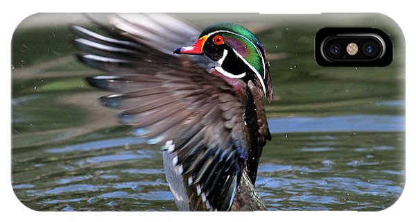 Wood Duck Stretch IPhone Case