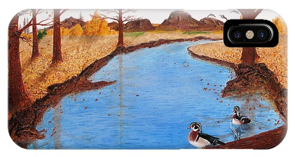 Wood Ducks On Jacobs' Creek IPhone Case