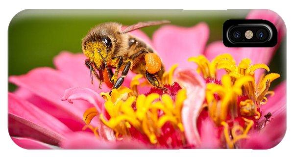 Worker Bee IPhone Case